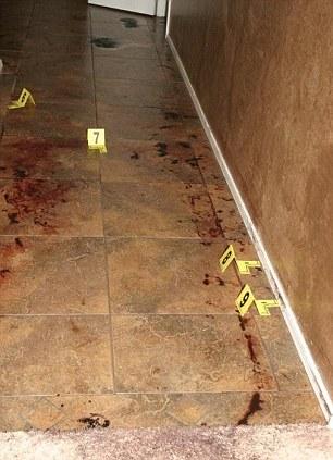Jodi Arias Crime Scene Murderpedia The Encyclopedia